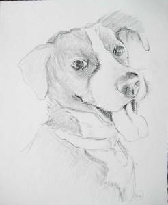 Molly_portrait_blackandwhite
