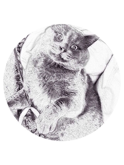 image-round-smokey